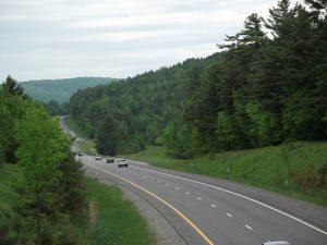 medium_trees hill 87