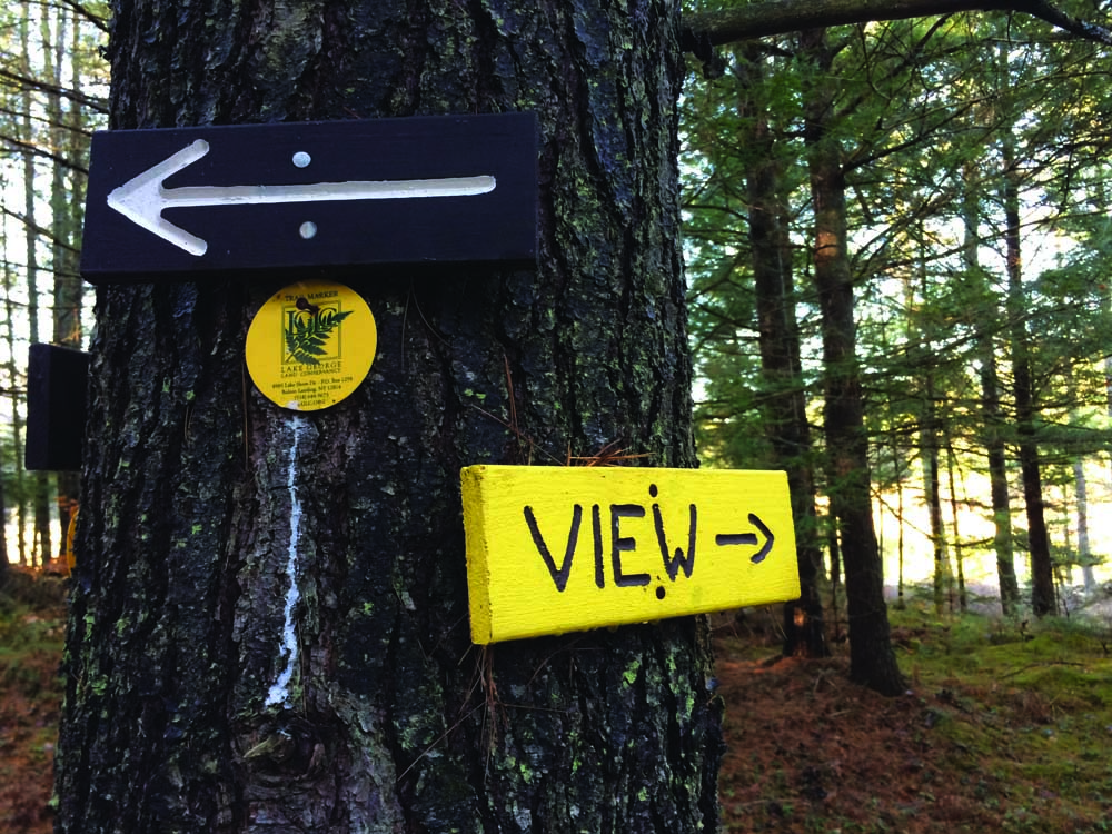 trail signs nailed to tree