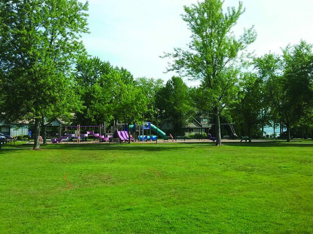 playground with bright green grass