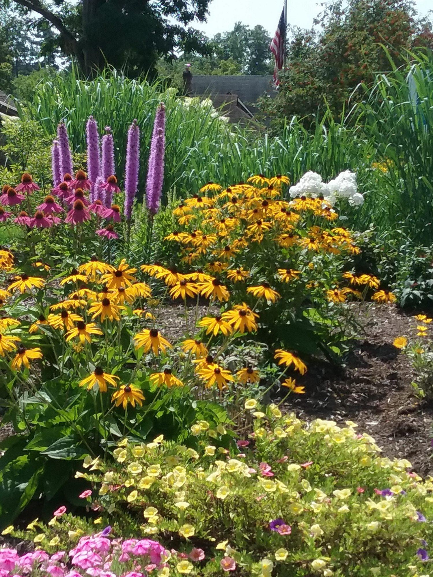 Rogers park garden 1